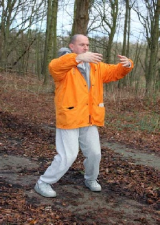 Manfred van Doorn Taikiken training